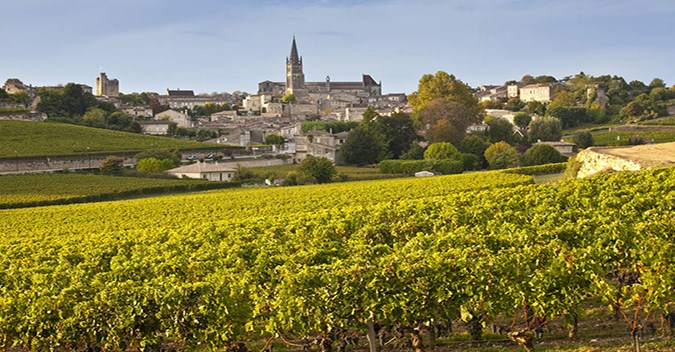 Gastronomy, Vineyards & Grands Crus